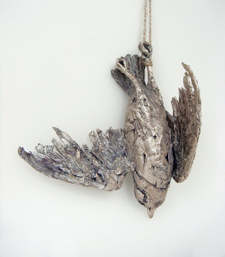 Large Dead Bird