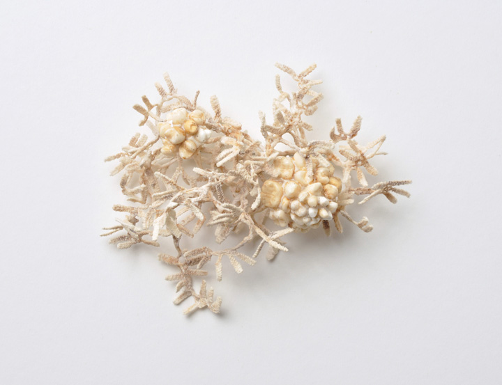 bobbin lace brooch 1